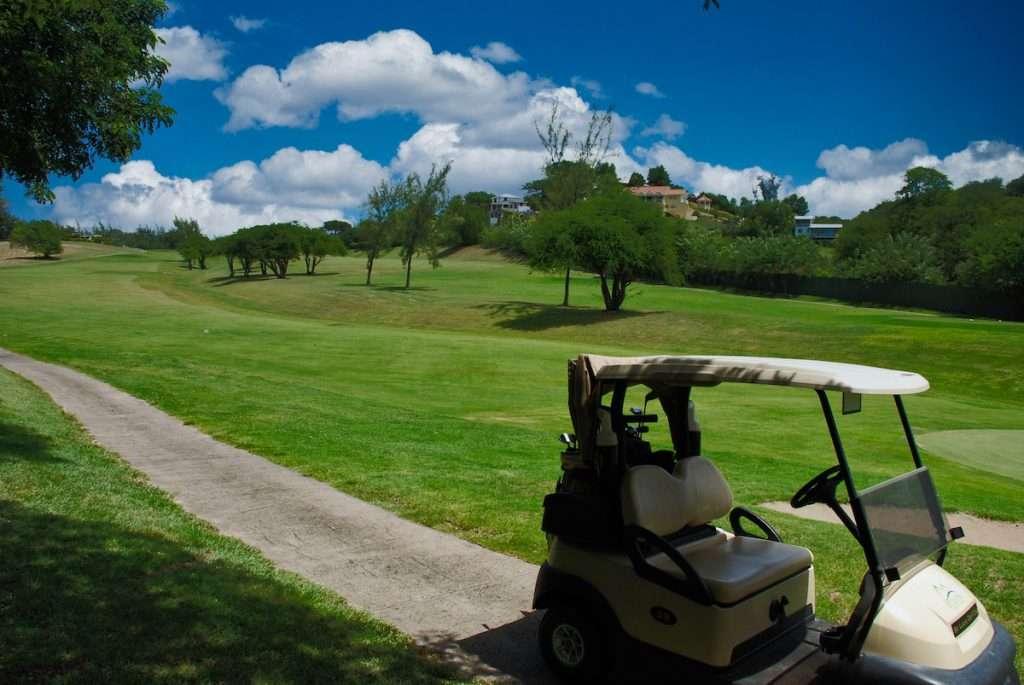 golf caddy sky luminar copy