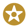 gold-star-dot-design-icon-100