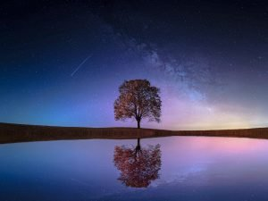 luminar-ai-2-reflections 1200