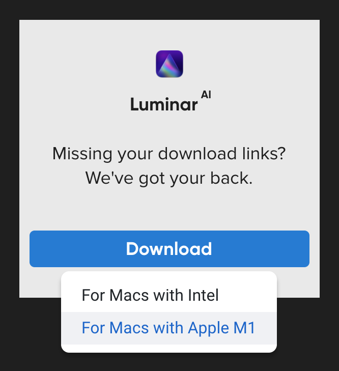 luminar-ai-missing-link